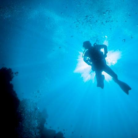 Diving at Cabo de Palos
